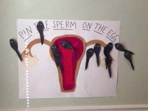pin he sperm on the egg